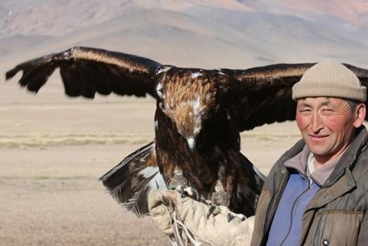 """Moğolistan'da Kazak Türkü ata geleneği kartal avcılığını sürdürüyor. Moğolistan'ın Bayan Olgi bölgesinde yaşayan Kencebek Baytolda, """"berkutçi"""" olarak adlandırılan kartal avcılığı geleneğini sürdürüyor. Kartalı ile katıldığı festivallerdeki yarışmalarda bir de birinciliği bulunan Baytolda, mesleğin babasından miras kaldığını söyledi."""