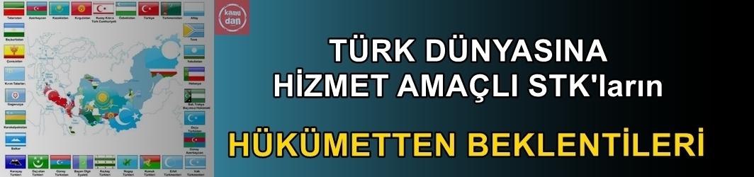 Türk Dünyasına hizmet amaçlı STK'ların hükümetten beklentileri