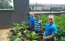 Öğrenciler Organik Tarımla Toprakla Buluştu