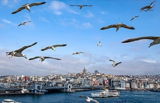 Marmara Bölgesi'nde Hava Sıcaklığı 1 İla...