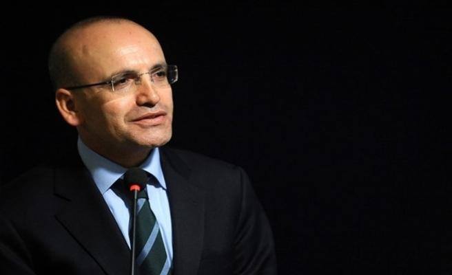 Başbakan Yardımcısı Şimşek'ten döviz açıklaması