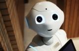 3 Ayda 5 Robot Daha İş Başı Yapacak: Türkiye'de İşe Başladı