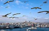 Marmara Bölgesi'nde Hava Sıcaklığı 1 İla 3 Derece Azalacak