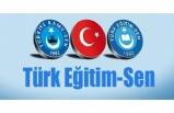 Türk Eğitim-Sen: Araştırma Görevlilerine De Yeşil Pasaport Verilmelidir