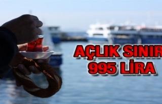 AÇLIK SINIRI 995 LİRA