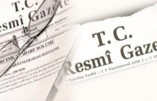31 MAYIS TARİHLİ RESMİ GAZETE
