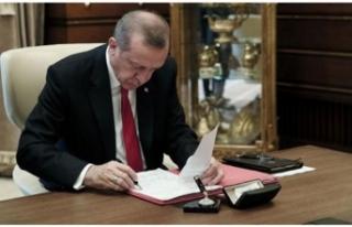 2019'da Türkiye'yi Kalkındıracak 13 Başlıklı...