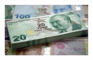 550 Lira Destek Veriliyor: İşte Gerekli Olan Şartlar