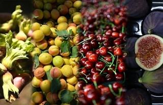 Türkiye 4 Ürünün Üretim ve İhracatında Dünya...