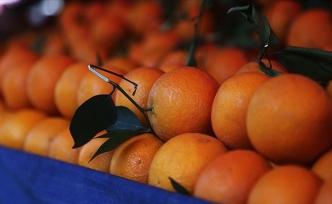Koronavirüsten Korunmak İçin Aşırı Tüketilen C Vitamini İdrar Kaçırmaya Neden Olabilir