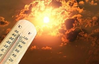 Türkiye'de Son 49 Yılın Dördüncü En Yüksek Sıcak Yılı Yaşandı