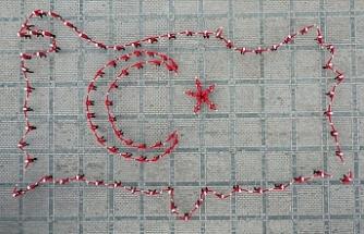 15 Temmuz Temalı Koreografi, Ayasofya Meydanı'nda Sergilendi