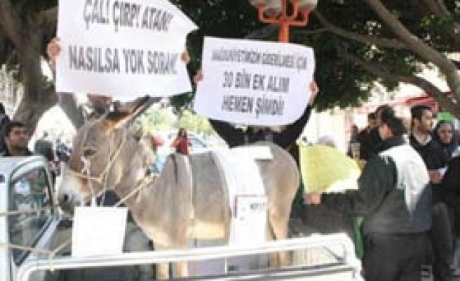 Mersin'de eşekli KPSS protestosu