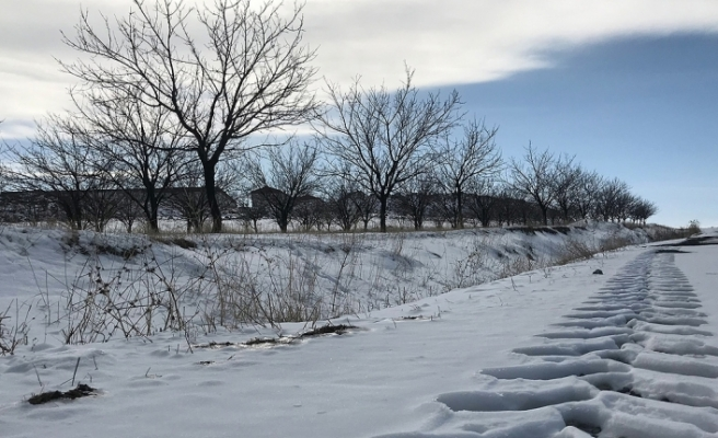 Meteorolojiden Flaş Uyarı: Sibirya Soğukları Geri Geldi